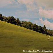 宋佳最新封面大片曝光 自在潇洒沐浴在新西兰的阳光下