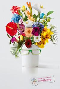 Hello Kitty眼镜广告欣赏
