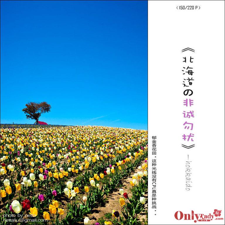北海道/北海道の五天四夜:非诚勿扰之旅14/32